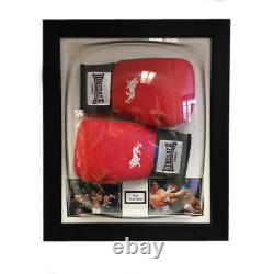 Boxing Glove Acrylic Display Case For 2x Signed Boxing Glove Memorabilia Dome
