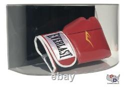 Curved Acrylic Wall Mount Horizontal Boxing Glove Display Case Full Size